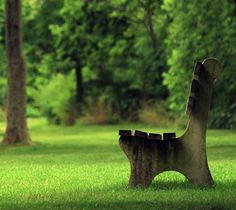 beautiful pictures of bench Summer Backgrounds, Wallpaper Backgrounds, Relaxing Pictures, Zen, Background Images Hd, Grass Field, Free Park, Relaxing Music, Nature Images