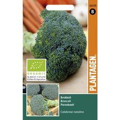 Broccoli - Calabrese Natalino - organic