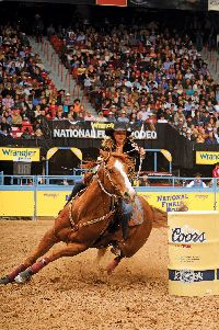 Amazing horse; Martha