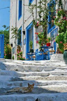 Kos island , Greece