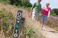 Enjoy walking on the network of footpaths, around the park.