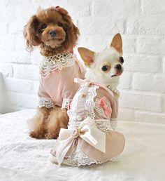 Victorian Dog Dress