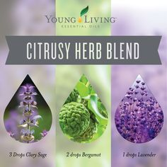With Young Living Clary Sage, Bergamot and Lavender you can welcome this Citrusy Herb Blend into your home and enjoy a clean, relaxing scent. Sage Essential Oil, Essential Oil Diffuser Blends, Doterra Essential Oils, Yl Oils, Young Living Diffuser, Young Living Oils, Young Living Essential Oils, Living Essentials, Diffuser Recipes