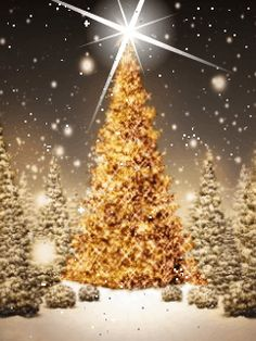 Merry Christmas & Happy New Year ! Christmas Tree Gif, Christmas Scenes, Christmas Animals, Merry Christmas And Happy New Year, Christmas Greetings, Christmas Lights, Christmas Holidays, Vintage Christmas Images, Christmas Pictures