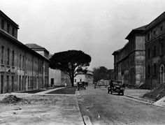 University of Cape Town's University Avenue in the 1930s. From the BUZV Collection in the Library's Special Collections.