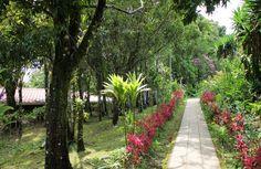Hotel El Bosque Monteverde #CostaRica   monteverdetours.com