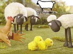 Бее...а как Вам шашлычок из курицы?Кто что предпочитает:крылышки, голень, грудка или бедро?#убарашка#нижнийновгород#доставкашашлыка#шашлык#огонь#мангал#мясо#счастьеесть#