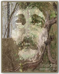 The Vine..  (To contact the artist : fredart@live.com)