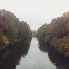 Trotz Nebel und Nieselregen. Berlin ist so wunderschön im Herbst. Vor allem beim Spaziergang am Kanal. NK 🍁 #berlin #neukölln #kiezcouture #kiez #kiezliebe #neuköllnvibes #igersberlin #wheninberlin #berlin4you #herbst #autumn #autumnleaves #berlineransichten #berlinerpost #biginberlin #visit_berlin #landwehrkanal #naturephotography #dhpherbst #changingleaves #fall #nature #wonderlustberlin #prettylittleberlin