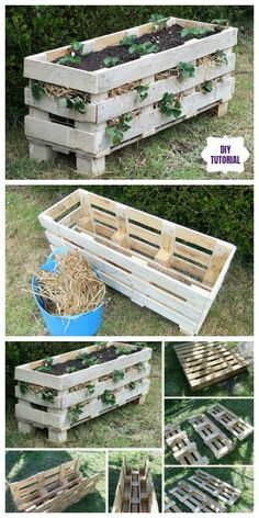 Vertical strawberry planter made from recycled pallets - Laura C .- Vertikaler Erdbeer-Pflanzer aus recycelter Palette – Laura Collver – Diy Vertical strawberry planter from recycled pallet – Laura Collver – Diy - Vertical Garden Diy, Diy Garden, Garden Ideas, Vertical Bar, Garden Bed, Recycled Garden, Recycled Pallets, Recycled Materials, Wood Pallets