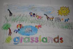 Great ideas for an animals/habitats unit