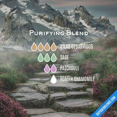 Essential Oil Diffuser Blends, Doterra Essential Oils, Yl Oils, Doterra Blends, Doterra Diffuser, Aromatherapy Diffuser, Elixir Floral, Diffuser Recipes, Belleza Natural