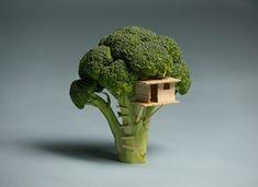broccoli/toothpick treehouse