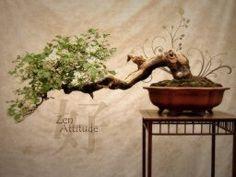 Mariage thème Zen