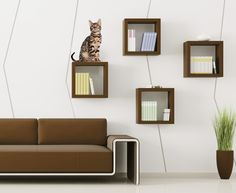 Catsters are known to go to any extent to make their homes more and more cat-friendly. Buzzle brings you some cool wall shelf ideas for your cat, which are sure to spice up the décor of your home.