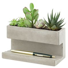 Pot de fleurs Planter And Pen Holder Large / Pot de fleurs - L 16,5 x H 9 cm