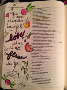 song of solomon commentary essay Song of songs: a wonderful song about love a free bible version and commentary on the old testament book of song of songs in easyenglish.