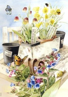 Flower Box - Marjolein Bastin