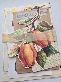 Forest Ephemera Pack 2 junk journaling kit autumnal collage