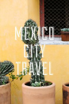 Mexico city travel, Mexique
