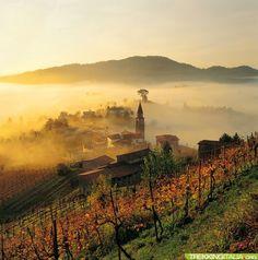 Trek del Prosecco, da Conegliano a Valdobbiadene, province of Treviso Veneto, Italy