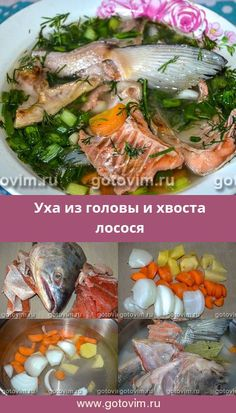 Fish Dishes, Fish And Seafood, Fresh Rolls, Food And Drink, Cooking, Ethnic Recipes, Soups, Chef Recipes, Food And Drinks