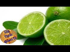 Herbal and Herb: Trị ho tiêu đờm nhanh chóng hiệu quả bằng trái chanh  - cay thuoc quanh ta