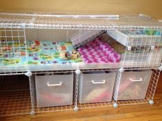 """It's hard to see in the picture, I added a viewing window to the front coroplast.  The two front grid panes are 14"""" x 14"""" x 1/8"""" thick.  The coroplast pane is 5"""" x 55"""" x 3/16"""" thick. I attached the coroplast viewing window to the inside of the base with velcro for easy cleaning.  If you don't use connectors, I recommend using 3/16"""" or thicker plexiglass because it feels much more sturdy. Designed by TL Berkey at getpiggiewithit.blogspot.com"""