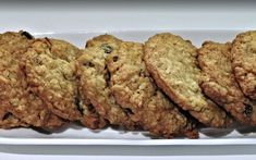 Oatmeal chocolate chip Cookies, Coconut flour, sub Swerve for sugar, South Beach Steel Cut Oatmeal Cookies, Best Oatmeal Cookies, Oatmeal Cookie Recipes, Recipe Using Cooked Oatmeal, Cinnamon Oatmeal, The Oatmeal, Oatmeal Flour, Oatmeal Biscuits, Coco Cookies