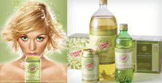 Canada Dry Sparkling Green Tea Ginger Ale