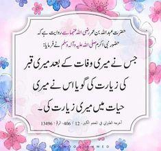 Islamic Qoutes, Islamic Teachings, Islamic Messages, Religious Quotes, Quran Pak, Islam Quran, Imam Ali Quotes, Quran Quotes Inspirational, Islamic Gifts