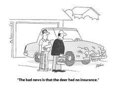 "Premium Giclee Print: ""The bad news is that the deer had no insurance."" – Cartoon by Bob Zahn : Source by artdotcom Insurance Humor, Insurance Marketing, Car Insurance Tips, Term Life Insurance, Auto Insurance Companies, Insurance Agency, Free Quotes, Bad News, 6s Plus"