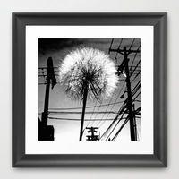 Fly away Framed Art Print by Vorona Photography   Society6