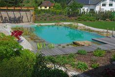 Schwimmteich mit Holzdeck, Halbmeier Gartengestaltung,  Pool for Nature, Gartendesign, Badespaß, Naturpool