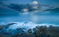 timothy-poulton-photowork.jpg (1000×625)