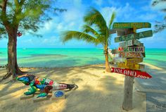 Grand cayman- things to do and see