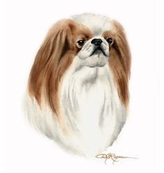 JAPANESE CHIN Dog Watercolor Painting