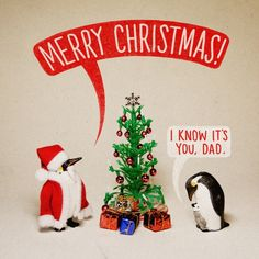 Funny Christmas Pictures with Captions