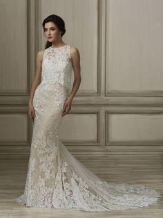 66e12a2e575 76 Best Adrianna Papell Brides images