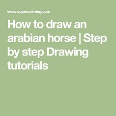 How to draw an arabian horse | Step by step Drawing tutorials