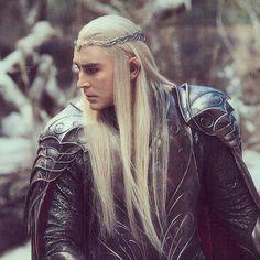 Elf king. Lee Pace Thranduil, Elf King, Legolas, Middle Earth, Lord Of The Rings, Tolkien, Lotr, The Hobbit, Harley Quinn
