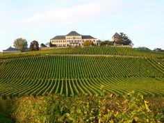 Schloss Johannisberg on Rheingau, amazing view over the vineyards.