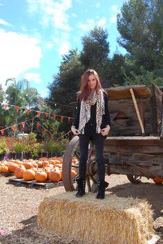 The Great Pumpkin. #leopard #halloween #style #fashion #pumpkins #fall #brandymelville #stevemadden #boots