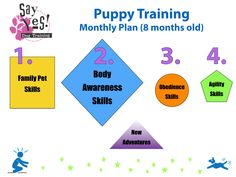 Planning For Success With Your Dog Training | Susan Garrett's Dog Training Blog