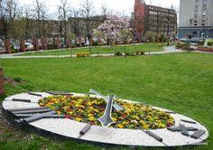 Kwietny zegar na Skwerze Doncaster (fot. Z Daniec) #gliwice  #wiosna #springtime #flowers