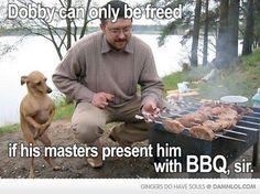Free Dobby!!