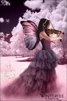 fantasy beautiful pink and purple butterfly fairy playing the violin Foto Fantasy, Fantasy World, Fantasy Art, Fairy Dust, Fairy Land, Fairy Tales, Fairy Pictures, Love Fairy, Beautiful Fairies