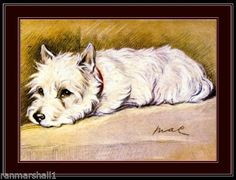 English-Picture-Print-West-Highland-Terrier-Puppy-Dog-Dogs-Vintage-Poster-Art
