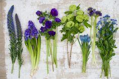 Groen wonen   Haal de lente in huis met lentebloeiers - Woonblog StijlvolStyling.com