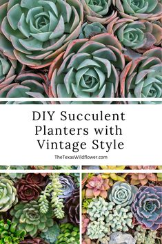 What's cuter to give (or keep!) this spring than cheerful DIY succulent planters in darling, old-fashioned piece of tins? Thanks to Succulent Salon of Texas for the project details. Vintage Tins, Vintage Style, Vintage Fashion, Succulent Planter Diy, Succulents Diy, Vintage Planters, Vegetable Garden, Wild Flowers, Writers